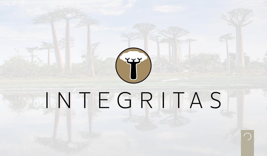 INTEGRITAS-ontwerp-Website-Article-Hearder